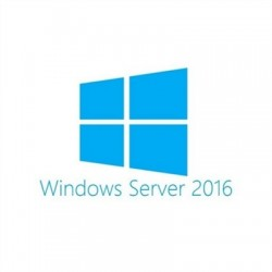 Microsoft Windows Server Std 2016 CAL Us OEM